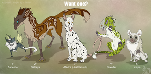 Point Adoptables - Auction!  CLOSED by Chaluny