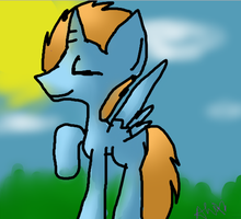 Colt HarmonyStar enjoying the sun by Doodle-To-The-Rescue