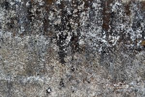 Concrete Texture Stock by kodereaper