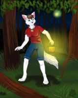 At night in the wood by Dafkaudavka