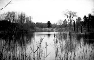 lake overview by Mary369