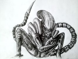 Another Full Alien by LINKOuTProduction