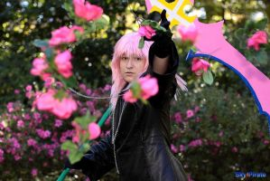 Marluxia cosplay 3 by YachiruFoxTailFairy