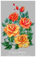 Coloured Roses by hatefueled