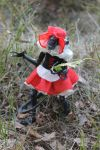 Little Red Riding Hood by Galiades