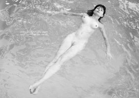 = HesperideS = by fionafoto