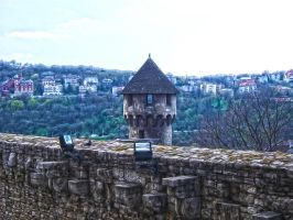 Budapest Castle 2 by jdesigns79