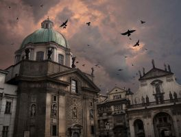 Birds over Prague by camp87