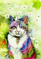 Rainbow cat by morgansartworld