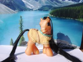 Pocahontas Custom MLP SOLD by bambikate