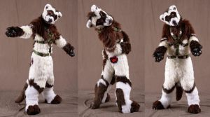 Scout Ferret: FCN 2013 by Sharpe19