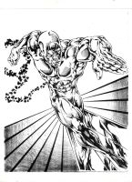 the silver surfer by Capocyan-Arvin
