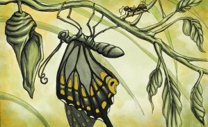 The Ant and the Crysalis by Evanira
