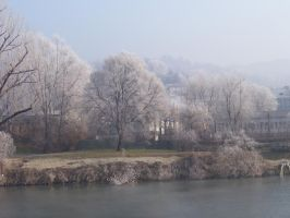 Frosty Torino 2 by xinh