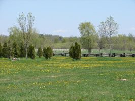 Pastoral Fence Background 4 by FantasyStock