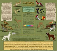 The Ultimate Caelupe Guide by FlareAndIcicle