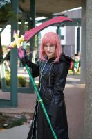 Cosplay: Marluxia by SonicRTR