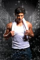 SRK angel by olgerda
