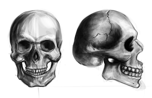 Skulls by Khem-Art