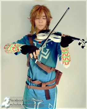 Link (Zelda: Breath Of The Wild) - Spirit by Echolox