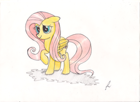 Fluttershy shy by ulisesdarklight