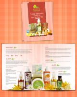 Olive Brochure by 11thagency