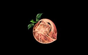 Fractal Stock - Peach by rockgem