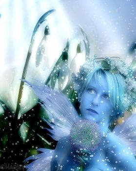 Frost Fairy by HarleyBliss