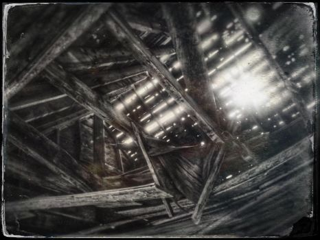 Ceiling by ditchcock
