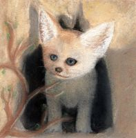 Fennec Pastel by bloominglove