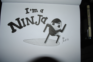 I'm a Ninja by Anthro1