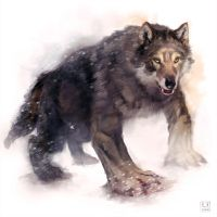 4 legged werewolf by carloscara