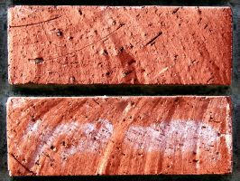 Red brick wall 02 tile-able by RocketStock