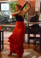 Flamenco by Tiburon411