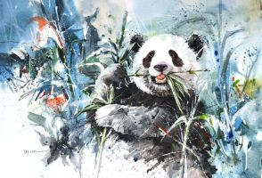 Panda Bear by Abstractmusiq