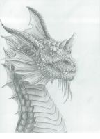 Dragon head by MistyWoods101