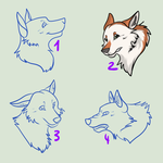 Your Wolf Headshots by Raashida96