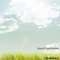Grass and Clouds Brushes by neutron13