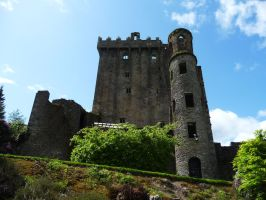 castle in Blarney 7 by indeed-stock