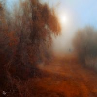 fading memories by ildiko-neer