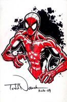 Spider-Man: Tampa Con commish by ToddNauck