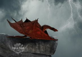 E-S draconis II by Elevit-Stock
