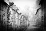 auschwitz by eviscuit
