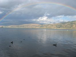 Duck Family Under Rainbow by Hibouette