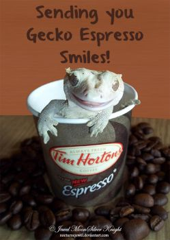 EXPRESSO GECKO SMILE by NocturneJewel