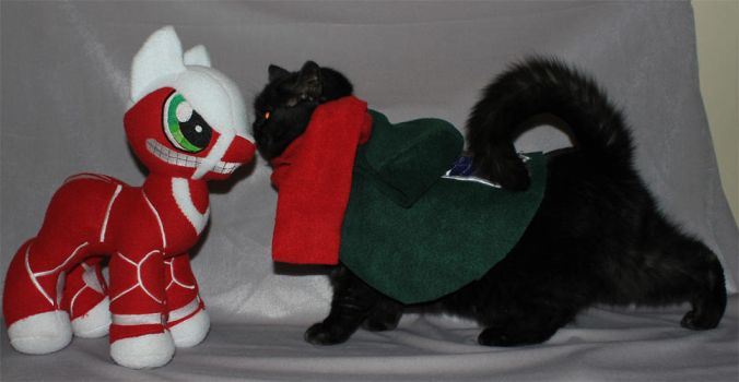 Tama my cat cosplaying by Vegeto-UchihaPortgas