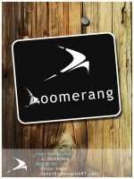 Boomerang logo design by Dane103