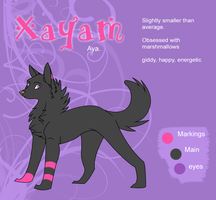 Xayam Reference by Katakire