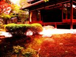 Suburban Temple, Kyoto by xthexproblematiquex