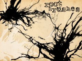 root brushes by Brownus